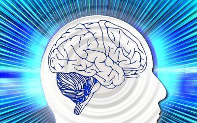 Neurofeedback: Retrain Your Brain