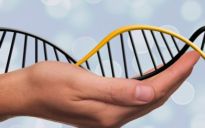 What is Biomedical Healing and How Can It Help My Child?